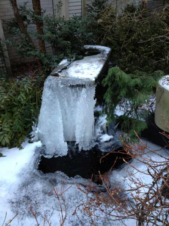 Frozen waterfall in the Holy Family Church garden.